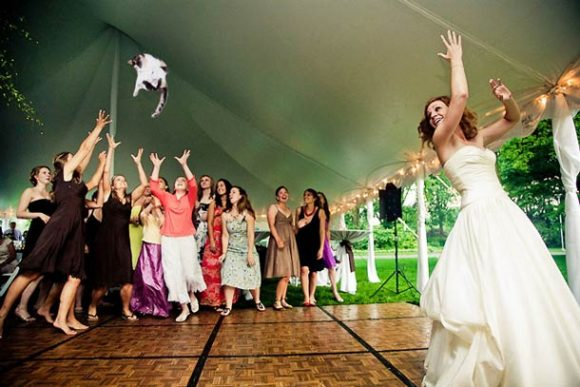 brides-throwing-cats_02