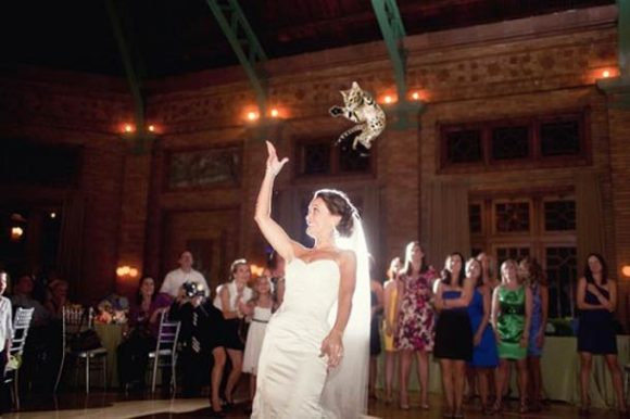 brides-throwing-cats_04