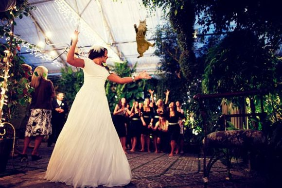 brides-throwing-cats_05