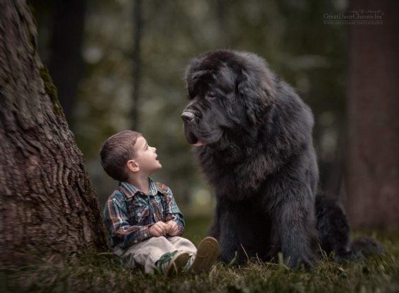 little_kids_big_dogs_13